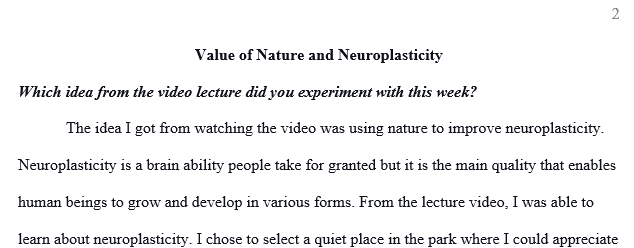Which idea from the video lecture did you experiment with this week?
